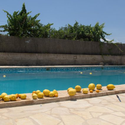 Travel photography, a swimming pool and lemons