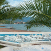 Documentary photograph of palm trees and sun beds in Budva, Montenegro